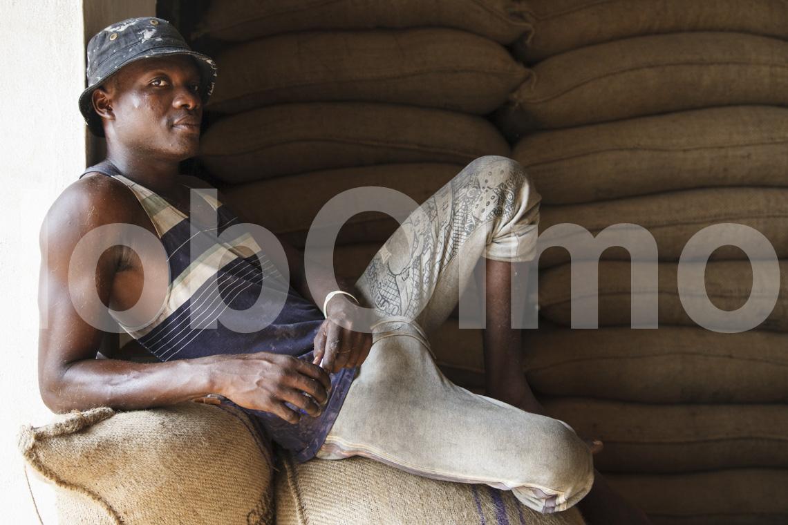 Arbeiter im Kakaolager