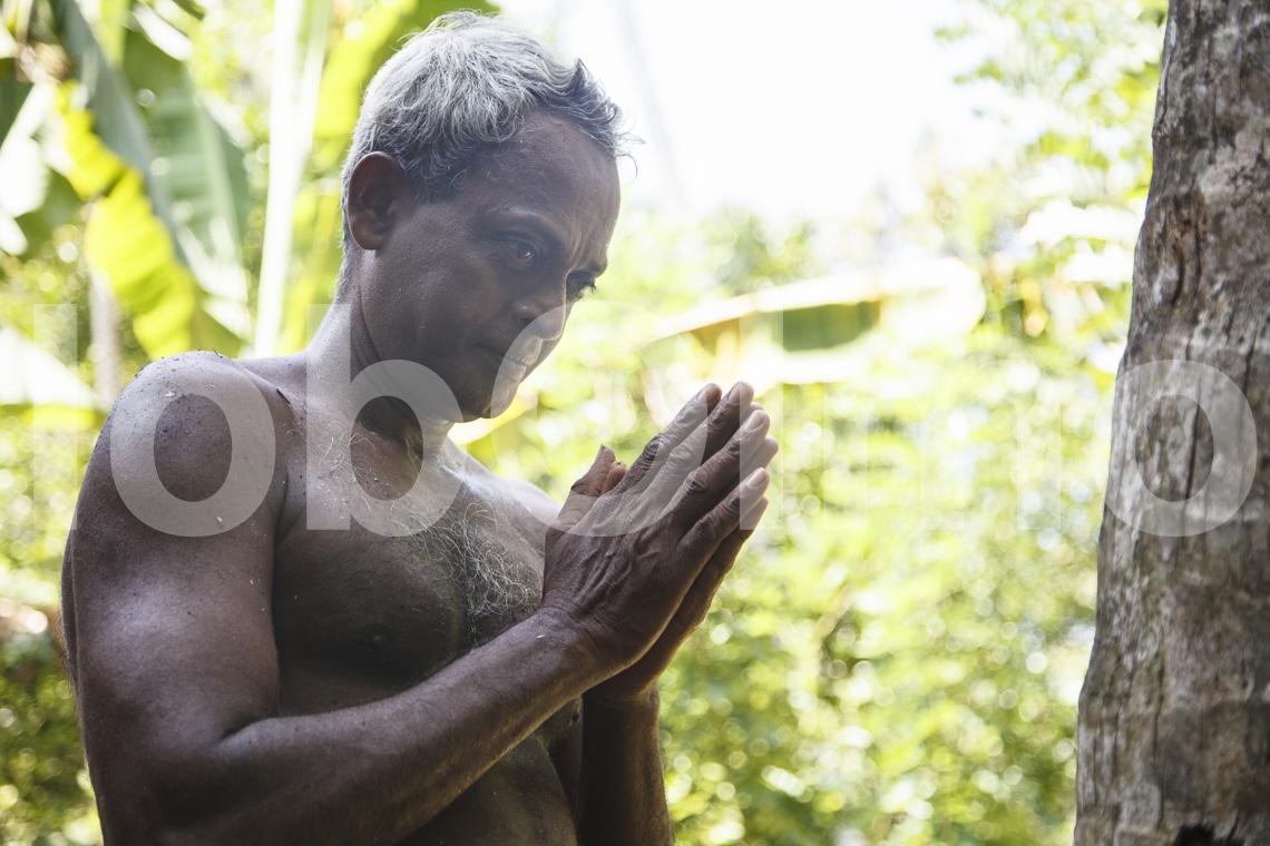 Kokospalmenkletterer
