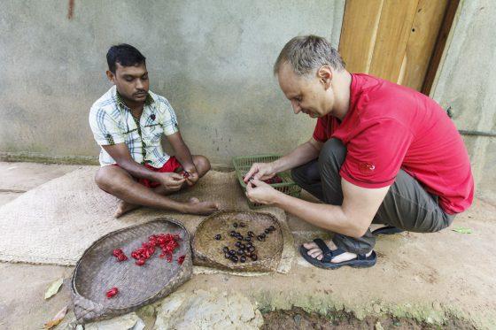 Zu Gast bei Muskatnussbauer Mahinda