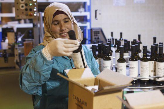 Palästina: Olivenöl schafft Perspektiven