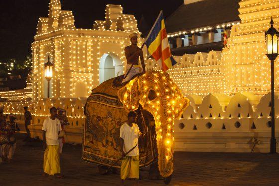 Esala Perahera: Ein magisches Spektakel für Buddhas Zahn